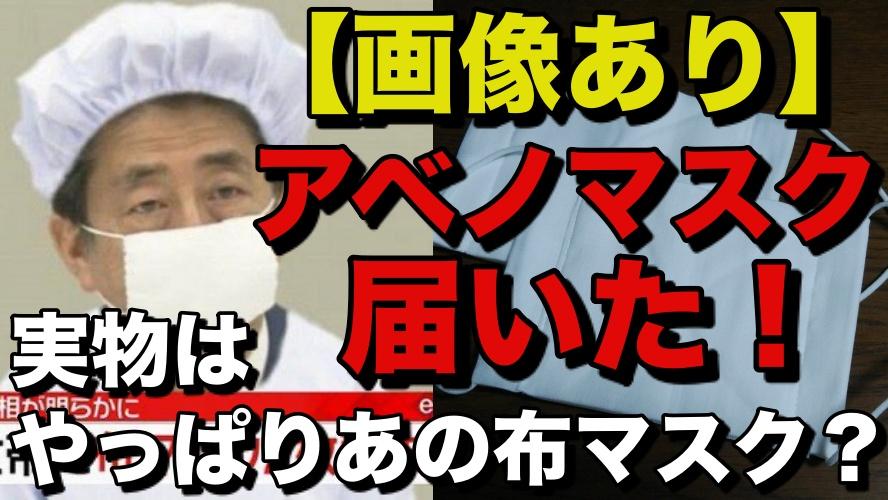 安倍 阿部 首相 マスク アベノマスク 到着 届いた 実物